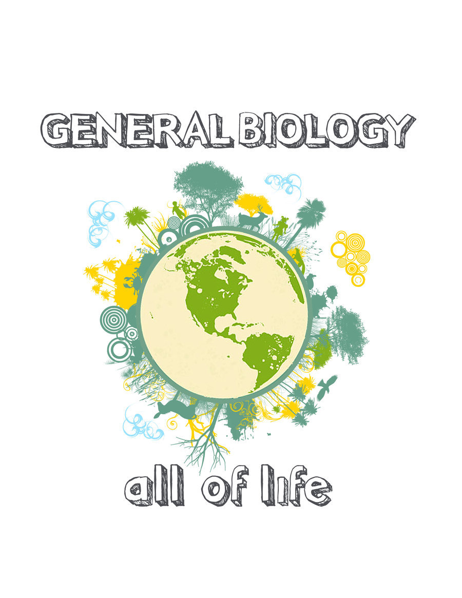 chapter 4 cells the working units of life