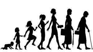 What are the different views on parenting?