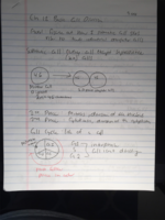 BIO 1020 - Class Notes - Week 8