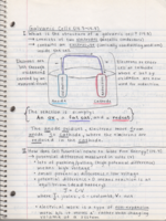 CHEM 030 - Class Notes