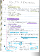 ECON 1202 - Class Notes - Week 8