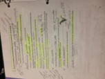 MBIO 213 - Class Notes - Week 7