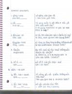 chin 4620 class notes