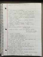 ECON 10223 - Class Notes - Week 5