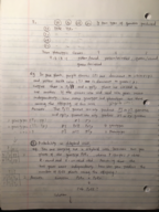 How do you calculate the probability in dihybrid cross?