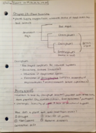BIOL 102 - Class Notes - Week 4