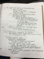PHY 1455 - Class Notes - Week 4