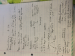 MBIO 111 - Class Notes - Week 12