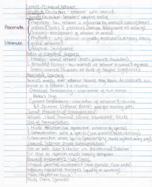 SYSB 1106 - Class Notes - Week 2