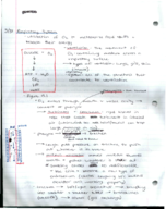 BU - BI 315 - Class Notes - Week 12