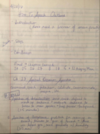 OTH 20649 - Class Notes - Week 18