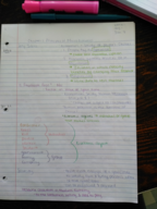 ECON 222 - Class Notes - Week 1