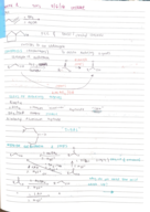 CHEM 241 - Class Notes - Week 3