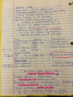 BUS 202 - Class Notes - Week 3