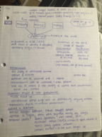 PSY 100 - Class Notes - Week 2
