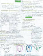 WGSS 208 - Study Guide