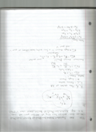 hist 4994 class notes