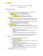 What is a sequence of 3 nucleotides along the dna strand calls for particular amino acid?