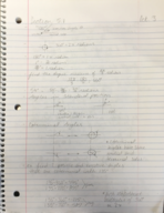 MATH 1150 - Class Notes - Week 7
