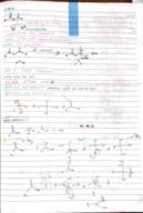 CHEM 241 - Class Notes - Week 8