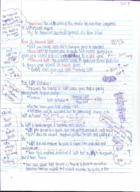 ECON 202 - Class Notes - Week 8