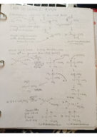 CHEM 210 - Class Notes - Week 6