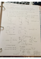 CHEM 210 - Class Notes - Week 8