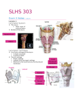 the largest unpaired laryngeal cartilage is the