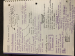 OK State - ENGL 4310 - Class Notes - Week 15