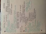 OK State - ENGL 4310 - Class Notes - Week 16