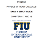 FIU - PHY 2054 - Study Guide - Midterm