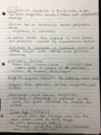 HIS 1113 - Class Notes - Week 1