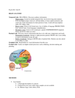 PSYCH 202 - Study Guide