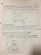 MICROECON 003 - Class Notes - Week 8