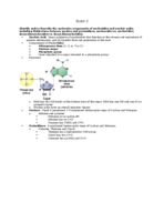 BCHM 3050 - Study Guide