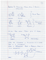 What are the characteristics of nucelotide?