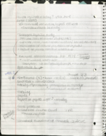 PSY 3401 - Class Notes - Week 3