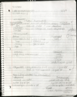 PSY 3401 - Class Notes - Week 4