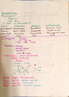 BIOL 1403 - Class Notes - Week 4