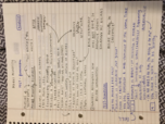 OK State - ENGL 3473 - Class Notes - Week 15
