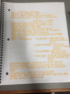 MGMT 371 - Study Guide
