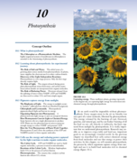 What is the definition of photosynthesis?