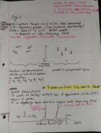 CHEM 2410 - Class Notes - Week 1