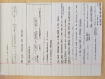 BUAD 311 - Class Notes - Week 1