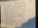 BIOL 1403 - Class Notes - Week 2