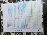 CHM 1045 - Class Notes - Week 2