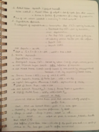 ECON 203 - Class Notes - Week 2