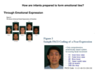 What theory suggests that humans are innately endowed w/capacity to express basic emotions?