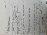 PSY 2012 - Class Notes - Week 2