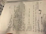PSY 2012 - Class Notes - Week 3